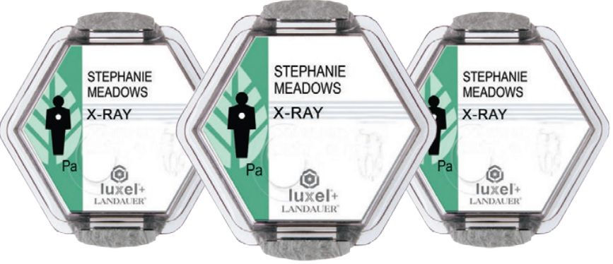 Image for Health Career X-Ray Badges