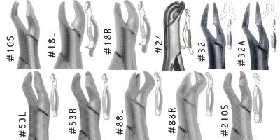Image for German Forceps (upper Molars)